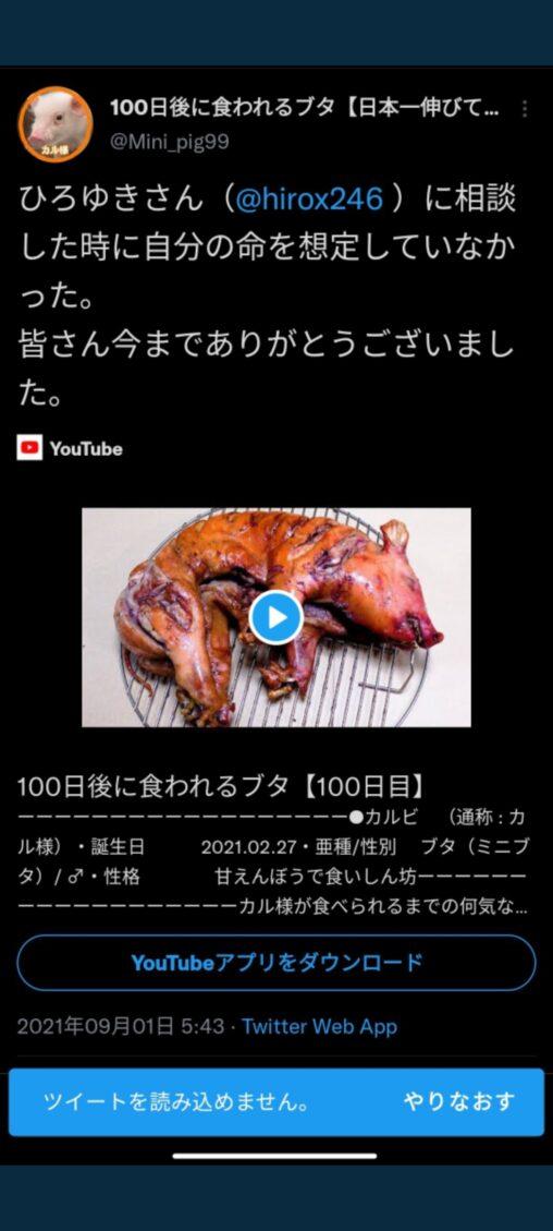 100日後に食われるブタの人、ひろゆきに見捨てられ壊れる「代わりにアンタが死ねば?w」ブタを丸焼き